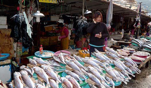 Pusan (Busan) – Je největším korejským přístavem a pátým největším na světě, leží na špičce Korejského poloostrova a obklopuje ho krásná hornatá krajina. Futuristická architektura nové čtvrti Marine City přitahuje stále více turistů, stejně tak i proslulý rybí trh Čagalčchi se spoustou restaurací, kde si můžete pochutnat na jídlech z čerstvě ulovených ryb. Specialitou jsou syrové ryby servírované ve stylu japonského sašimi, korejský termín je sengsonhö. Místní rozlehlá pláž Heunde je mezi Korejci velmi oblíbená. Město oficiálně oznámilo nabídku hostit letní olympijské hry roku 2020.