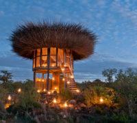 Čapí hnízdo po africku