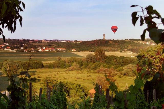 Západ slunce obarví vinohrady a zahájí čas hodování. Foto: Alena Binterová