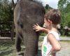 CK China Tours: Do Asie za poznáním se mohou vydat i rodiny s dětmi