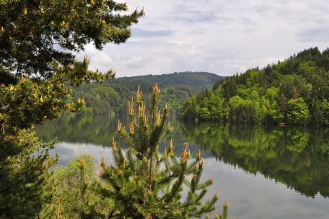 Berovo jezero Foto: Macedonia Timeless
