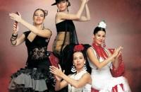 Den flamenka v Praze