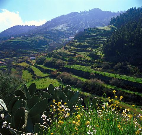 Lagunetas Foto: www.grancanaria.com