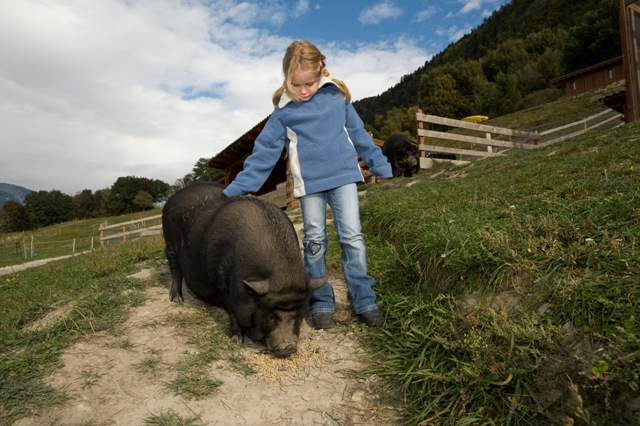 Foto: www.agrotourismus.ch