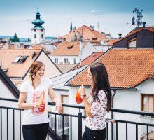 Manažeři jihočeských turistických oblastí poradí, jak čerpat podporu zprogramů COVID – cestovní ruch, COVID – kultura II. a COVID – nájemné