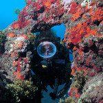 Potápění mezi poklady rozesetými okolo Gran Canaria