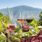 Vinařské oblasti Makedonie zažívají renesanci