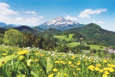 Foto: Österreich Werbung