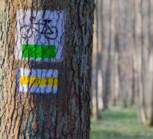 Karlovarský kraj opět podpoří Klub českých turistů ve značení cyklotras vregionu