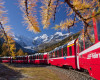 ENGADIN St. Moritz - Rhaetian Railway at the Montebello Curve, surrounded by golden larch trees. In the background, the Morteratsch Glacier, Bellavista (3,922m), Crast'Aguezza (3,854m), Piz Bernina (4,049m), Piz Prievlus (3,610m) and Piz Morteratsch (3,751m).  Copyright by ENGADIN St. Moritz By-line:swiss-image.ch/Christof Sonderegger