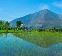 Jedno Bali nestačí: bude jich deset!