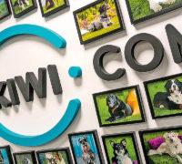 Kiwi.com se chce stát globálním virtuálním dopravcem