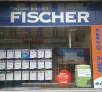 Cestovní skupina Fischer v ČR loni zvýšila tržby o třetinu