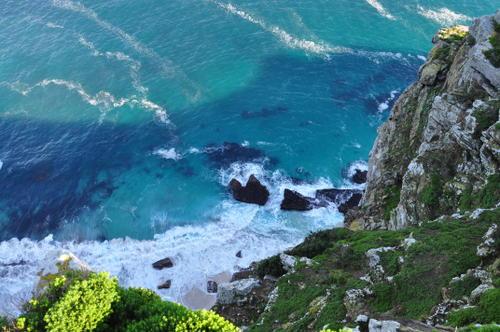 Oblast Cape Floral, Jižní Afrika  Foto: UNESCO © Silvan Rehfeld