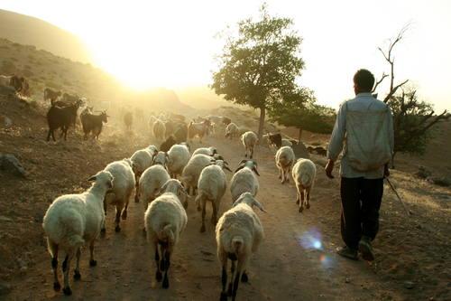 Kulturní krajina Maymand, Írán Foto: UNESCO © Maymand Cultural Heritage Base, P. Karamnejad