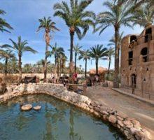 Tunisko se připravuje na příjezd zahraničních turistů
